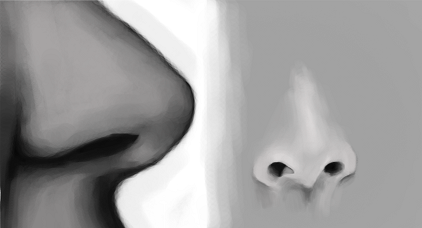 Nose Study by Nattaxx