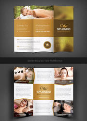 Splendid Beauty Spa / Salon Trifold Brochure by Saptarang