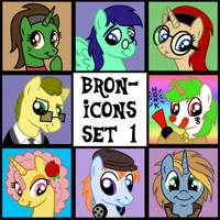 Bron-Icons 1 by Tim-Kangaroo