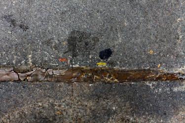 Caterpillar in Manhattan by spyed