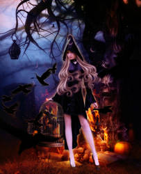 Witch and Crows by MelFeanen