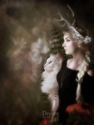 Dream by MelFeanen