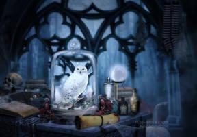 Hogwarts 's room by MelFeanen