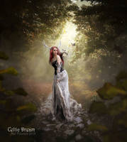 Celtic Dream by MelFeanen