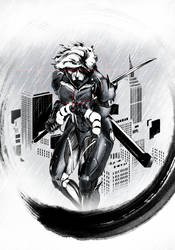Ninja Raiden by Kencho