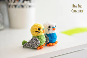 Budgies by MissBajoCollection