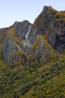 White Point fall by LucieG-Stock