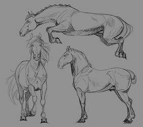 Warm Up sketches by akaParis