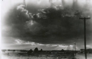 Field by richmetro11