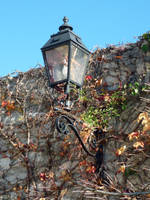 Autumn streetlamp by glanthor-reviol