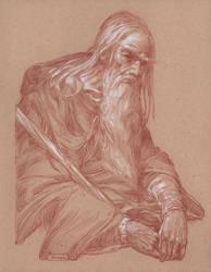 Gandalf in Moria - Contemplation by DonatoArts