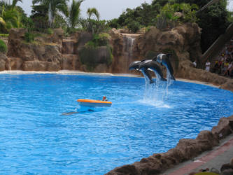 Jumping Dolphins by Pepples93
