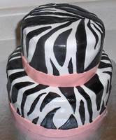 Zebra Cake, Take One by Zanowin