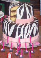 Inside the Zebra Cake by Zanowin