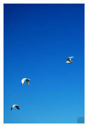 Party of three by ntora