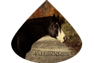 Sabrinna by HorsesRule8