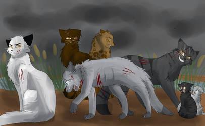 Stonefur's Death by WarriorCat3042