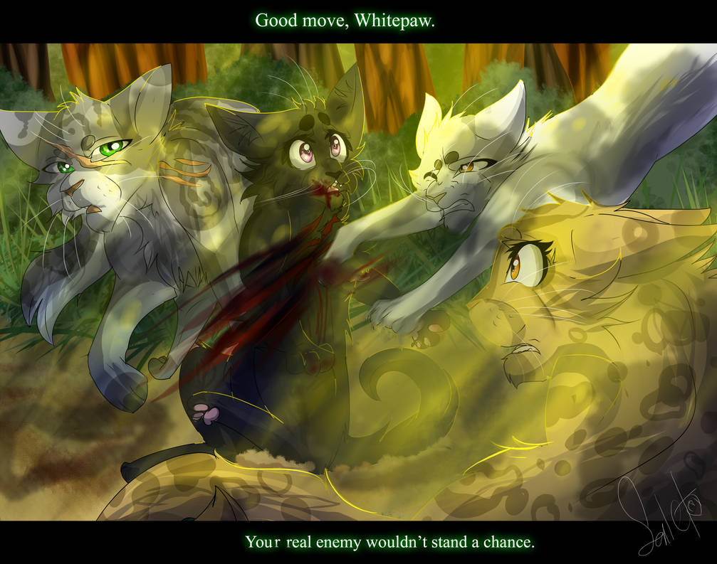 Blossompaw S Death Warrior Cat Ocs By Warriorcat3042 On