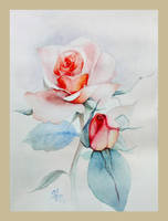 Rose by Villian-KucingKecil