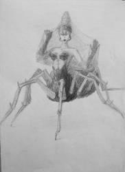 Spider sketch by hkmun