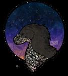 the sky by Triachi