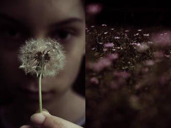 Spring Dream by SoraBelle