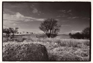 isle of arran - scot landscape by shades-noir