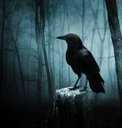 The Raven by Aenea-Jones
