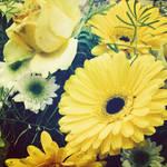 Yellow Vintage by Aenea-Jones
