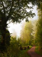 Foggy Morning by Aenea-Jones