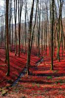 Bloodcreek Valley by Aenea-Jones