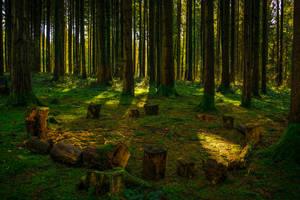 Secret Gathering Place by Aenea-Jones