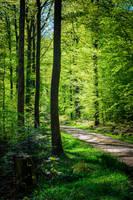 The World is Green VII by Aenea-Jones
