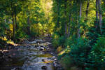 Where the River flows III by Aenea-Jones