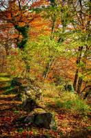 Autumn remembrance by Aenea-Jones