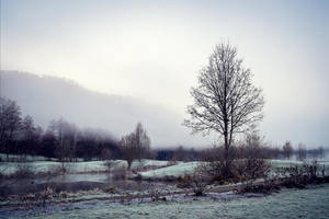 Bleak December by Aenea-Jones