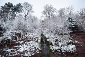 Winterfall by Aenea-Jones
