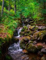 Little Falls by Aenea-Jones