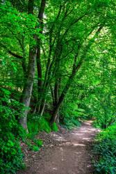 The World is Green IX by Aenea-Jones