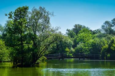 Bridge over Water by Aenea-Jones