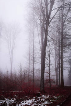 Ominous Tranquility III by Aenea-Jones