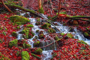 Bloodred Falls by Aenea-Jones