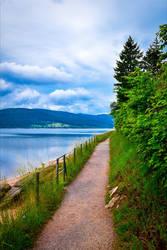Lakeside View II by Aenea-Jones