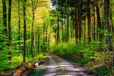 The World is Green XII by Aenea-Jones
