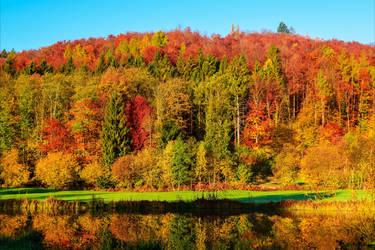 Autumn Glory II by Aenea-Jones