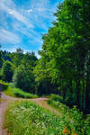 Crossroads by Aenea-Jones