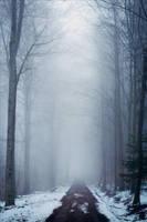 Where Ghosts Dwell by Aenea-Jones