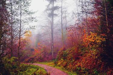 Last Breath of Autumn II by Aenea-Jones