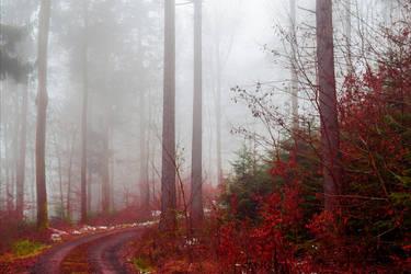 Bloodred Path III by Aenea-Jones