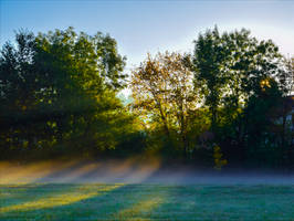 View of an Early Riser VII by Aenea-Jones